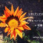 シヴァナンダヨガ プライベートクラスの記録 〜 循環する暮らしのこと 〜